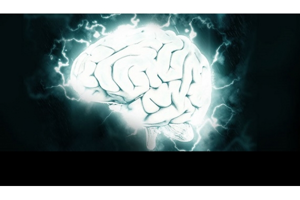 Os Efeitos da Cocaína no Cérebro