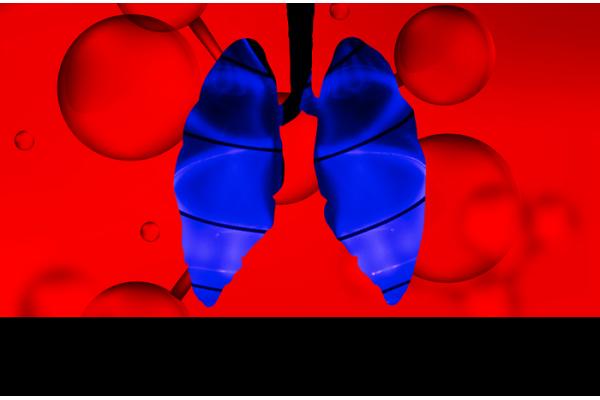 Investigadores da Universidade de Stanford Criam Dispositivo 'Pulmonar' que Transforma Água em Combustível Limpo