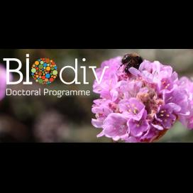 Bolsas de Doutoramento em Biodiversidade, Genética e Evolução 2017-2018