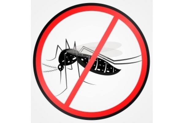 Curso Online Sobre a Malária