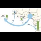 O Papel de Angola na Expansão e Adaptação Genética dos Povos Bantu em África e na América do Norte